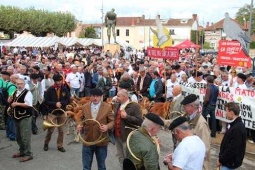 Rassemblement rural de Mont de Marsan : l'esprit du Sud et l'esprit grincheux